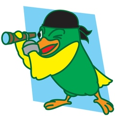 Pirates Bird vector