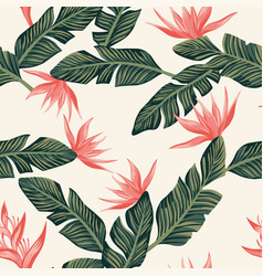 seamless composition from dark green tropical vector image