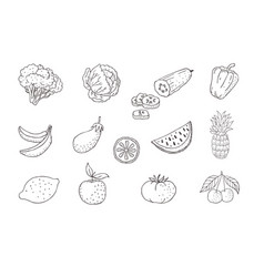 set of fruits and vegetables line icons vector image