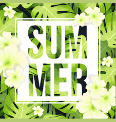 summer sale banner or poster with monstera palm vector image
