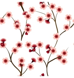 Seamless pattern with pink cherry flowers vector image