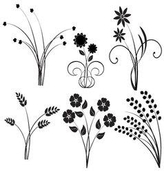 Design of nature vector