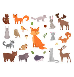 Cute wild animals forest animals vector
