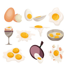 egg healthy food eggwhite or yolk in egg vector image