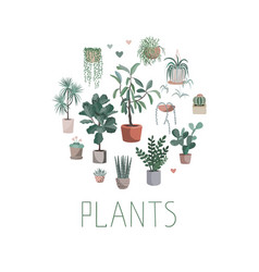 house plants arranged in circle hand drawn vector image