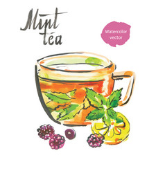 Mint tea watercolor vector