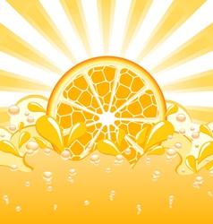 Orange splash vector
