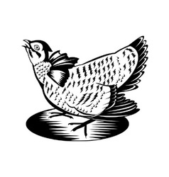 Prairie Chicken Hen Retro vector