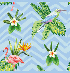 seamless composition tropical bird flowers and vector image