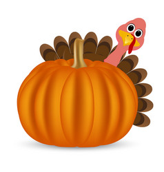 Turkey on Thanksgiving Day vector