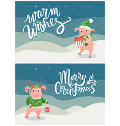 warm wishes and merry christmas greeting cards pig vector image