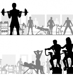 gymnasium vector image vector image