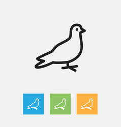 Of zoology symbol on dove vector