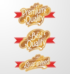 Decorative Text Banner vector image vector image