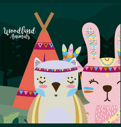 owl and rabbit wooland animals cartoon vector image