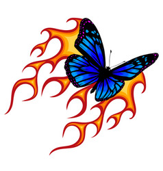 A butterfly made fire vector