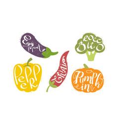 fresh vegetables prints set eggplant broccoli vector image