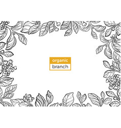 template organic branch 2 vector image