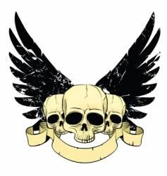 Skulls wings vector