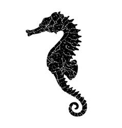 grunge seahorse vector image vector image