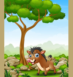cartoon warthog in the jungle vector image