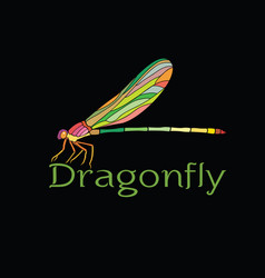 Colorful dragonfly designamphipterygidae on vector