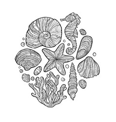 Doodle seashell set in zentangle inspired style vector