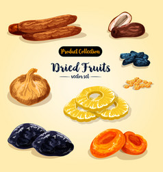 Dried fruit and candied berry set vector