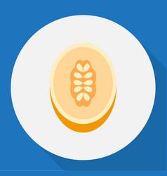 Of dessert symbol on melon vector