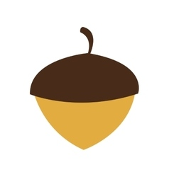 Single acorn icon vector