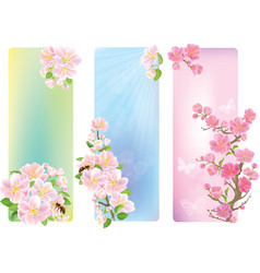 Vertical banners with a blossoming branch vector image vector image