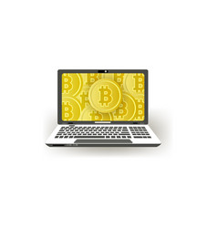 flat laptop computer monitor with bitcoins vector image