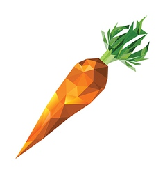 Geometric polygonal carrot vector