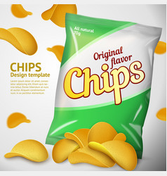 template chips package place for design vector image