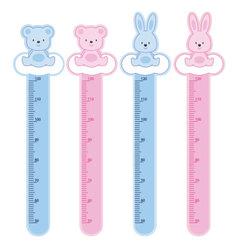 meter wall rabbits and bears vector image vector image