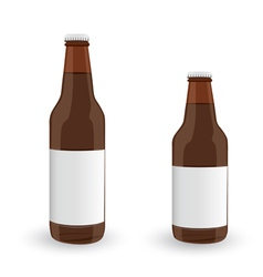 Glass beer brown bottle on white background vector