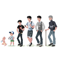 cycle of life for men from baby to senior vector image
