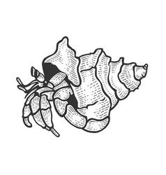 hermit crab sea animal sketch engraving vector image