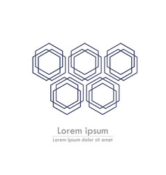 hexagonal background line with text stylized card vector image