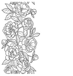 Peonies seamless vertical border vector