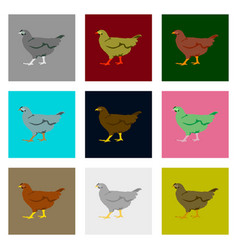 Set of in flat style hen vector