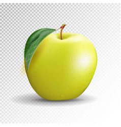 Yellow apple isolated on transparent background vector