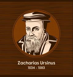 zacharias ursinus vector image