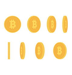 bitcoin gold coin at different angles vector image