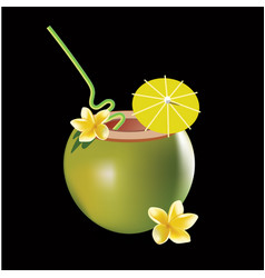 coconut cocktail isolated on vector image