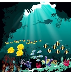 Coral reef with various species fish vector