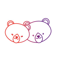 line cute bear head animal couple together vector image