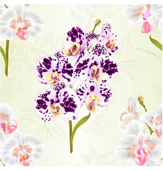 seamless texture branch orchids phalaenopsis vector image
