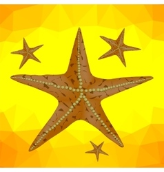 Starfish on a Yellow Polygonal Background vector image