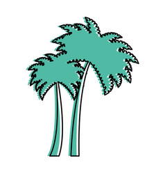 tree palms isolated icon vector image